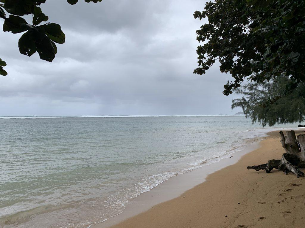 Anini_Beach_Park_East_View