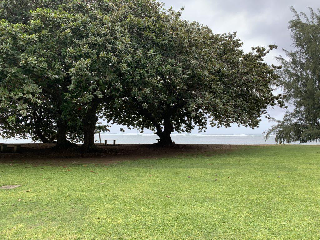 Anini_Beach_Park_View