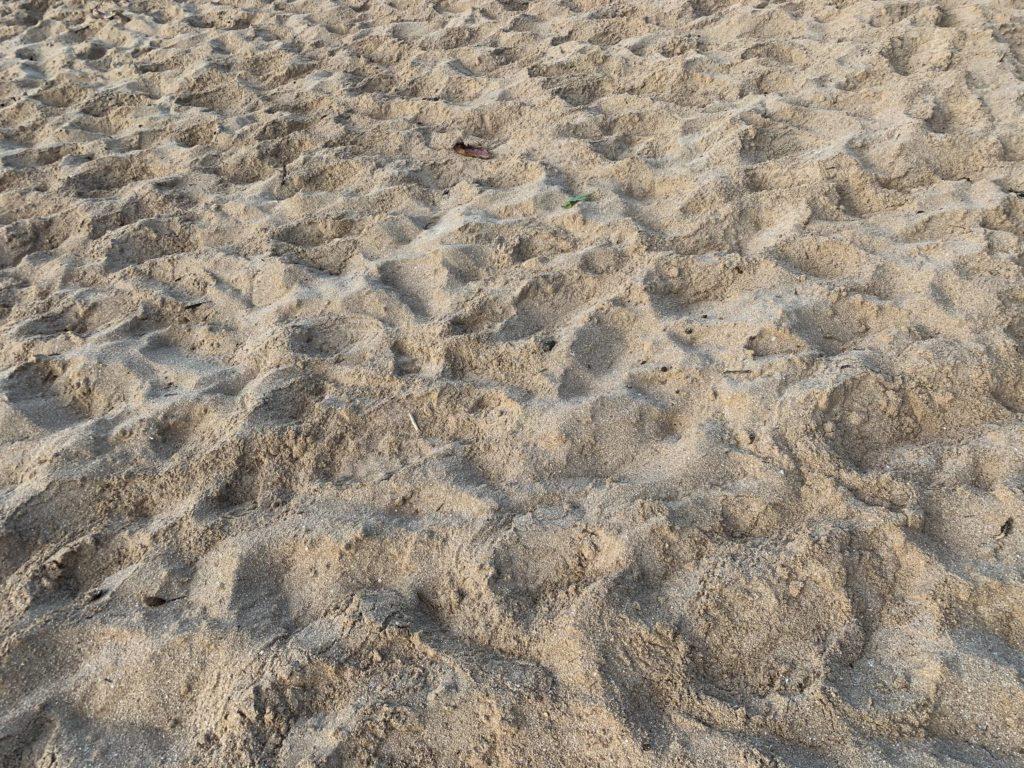 Banzai_Pipeline_Beach_Sand