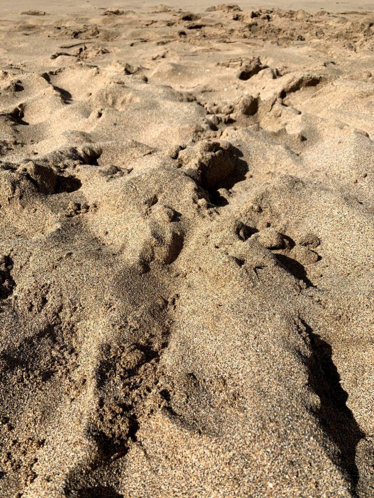 Ka'anapali Beach Sand