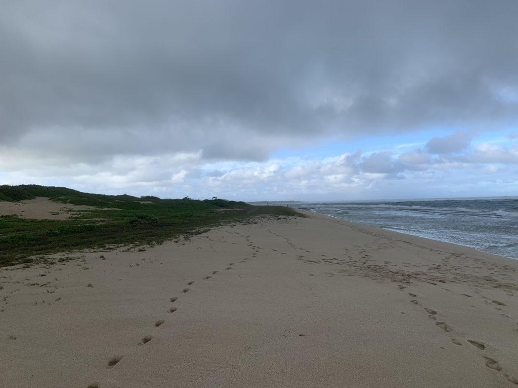 Kahuku_Beach_North_West_View