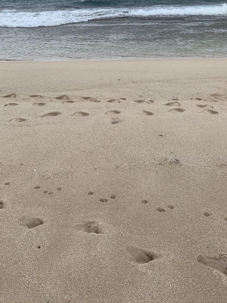 Kahuku_Beach_Sand_into_Ocean