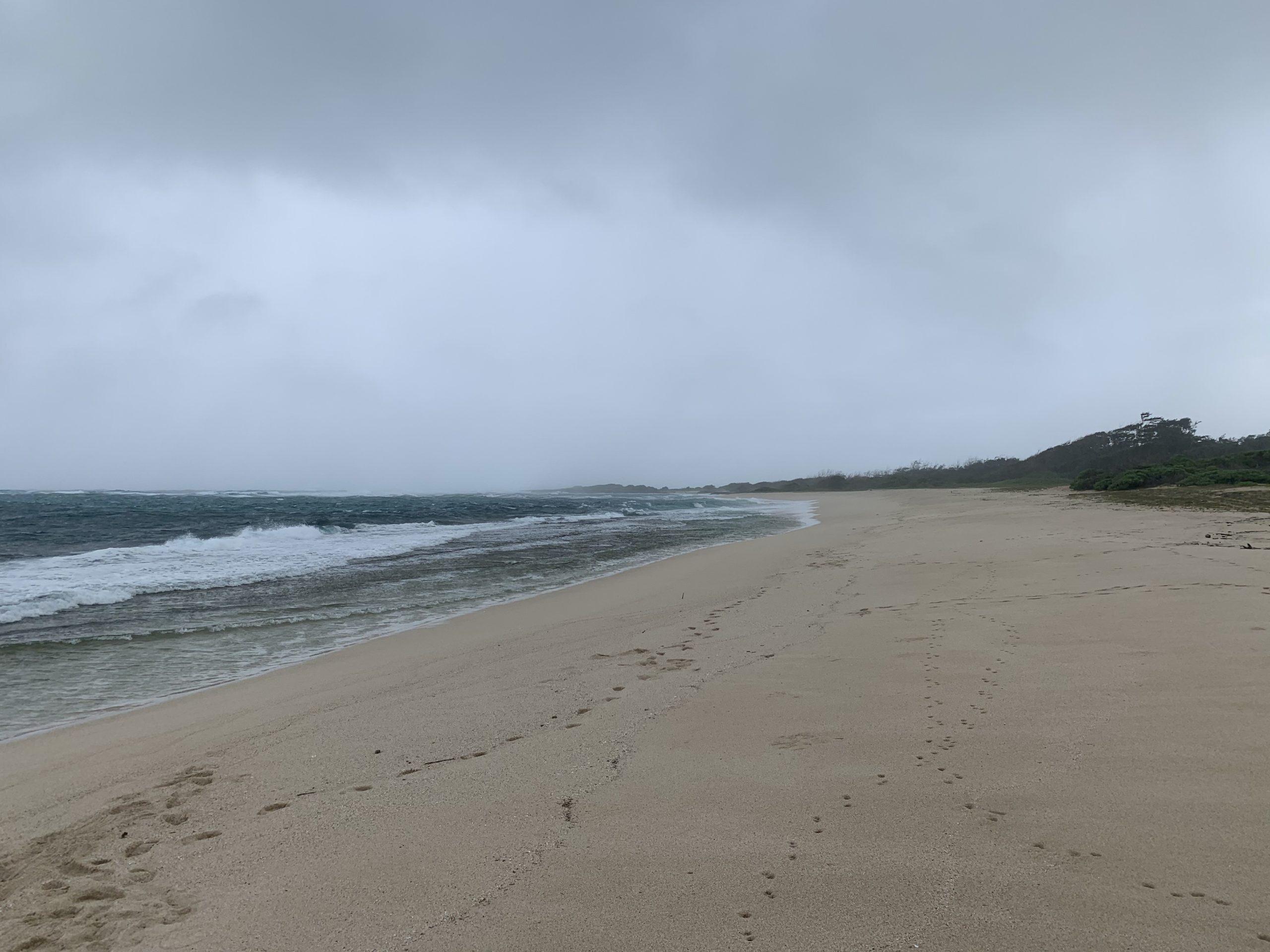KAHUKU BEACH