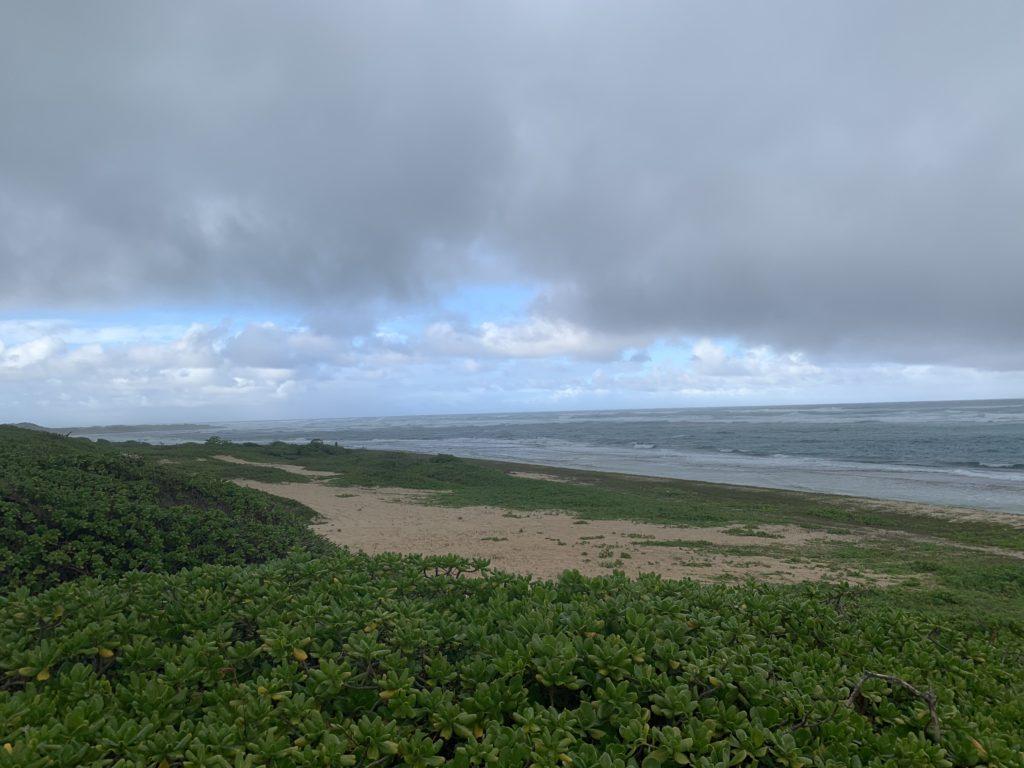 Kahuku_Beach_View