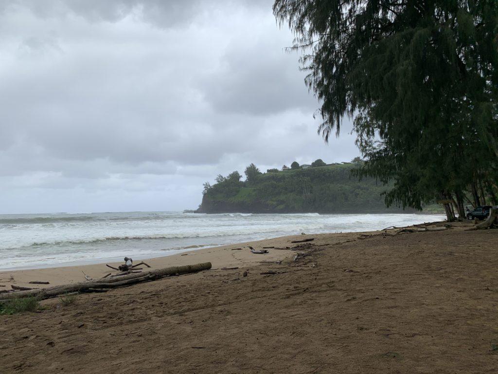 Kalihiwai_Beach_East_View