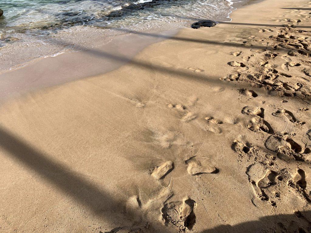 Kapalua Bay Beach Sand