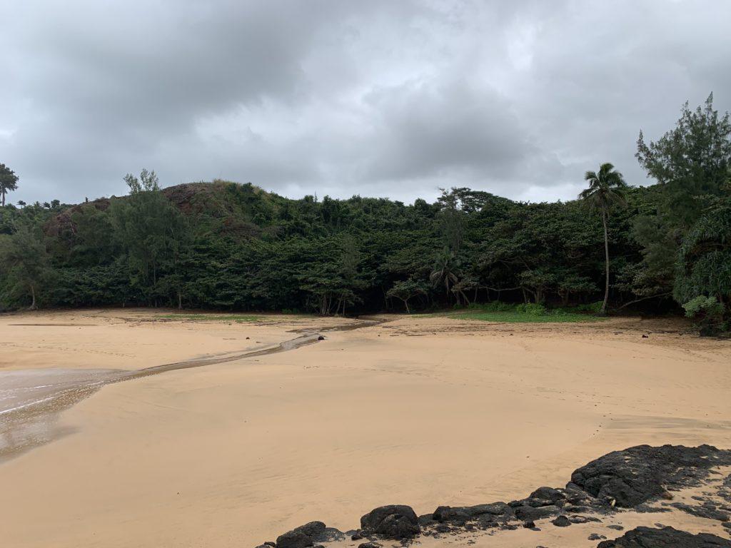 Kauapea_Beach_Beach_View