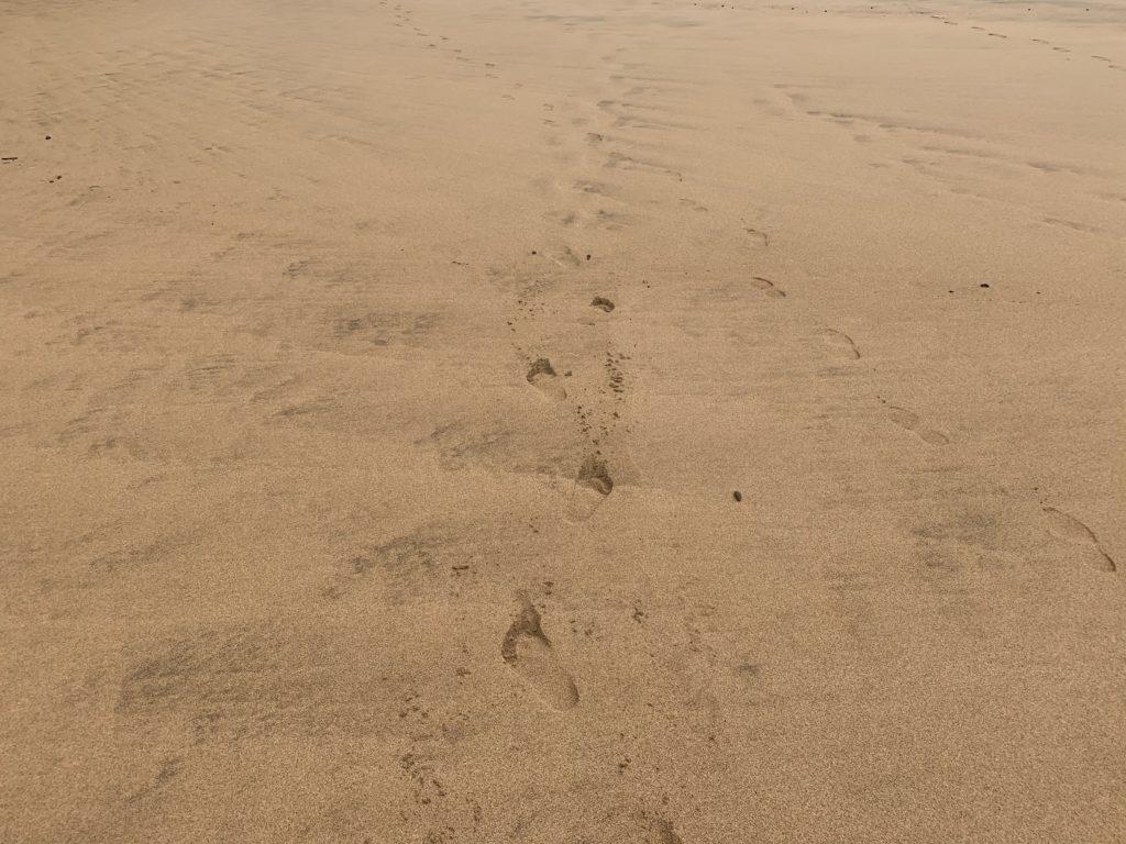 Kauapea_Beach_Sand