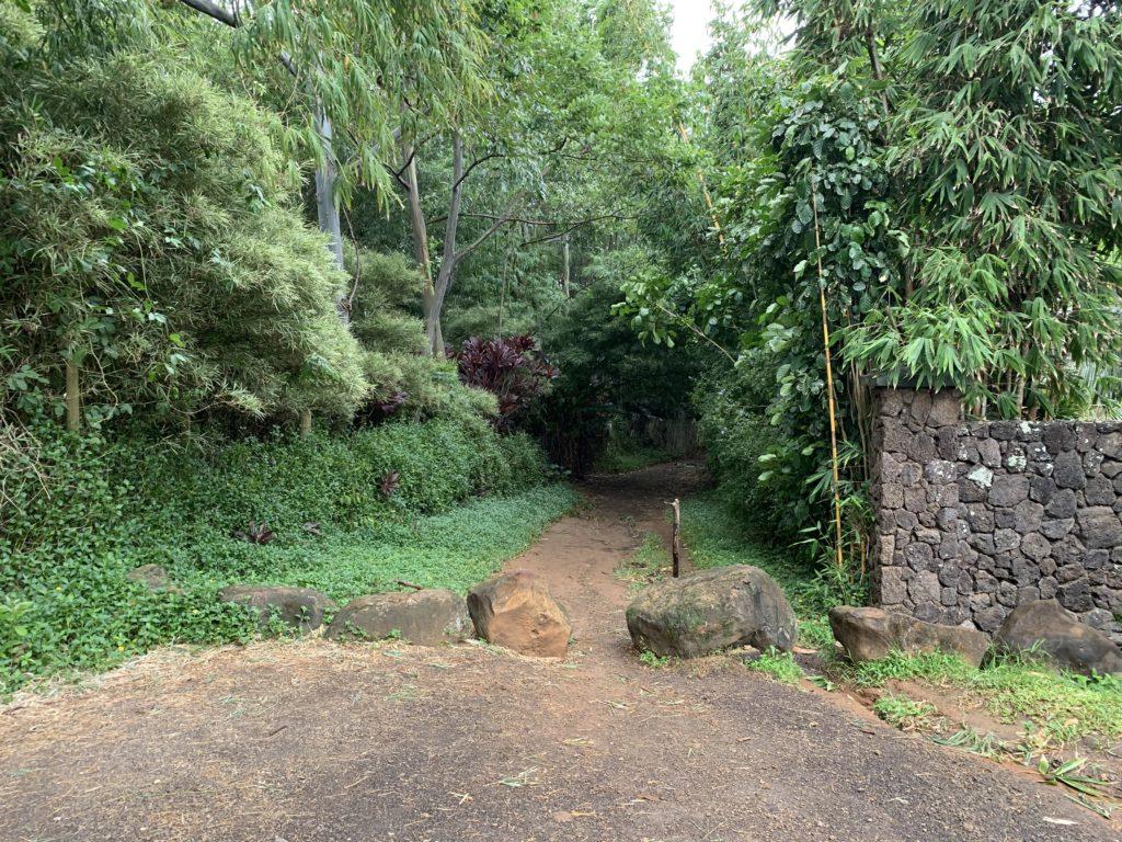 Kauapea_Beach_Trail_Entrance