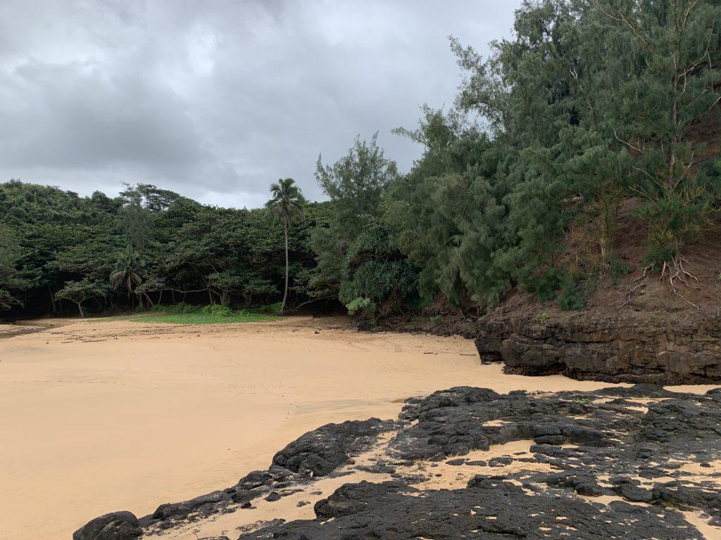 Kauapea_Beach_View_Back_to_Path