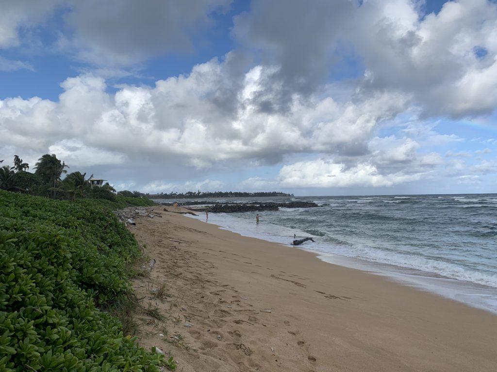 Lydgate_Beach_Park_North_View