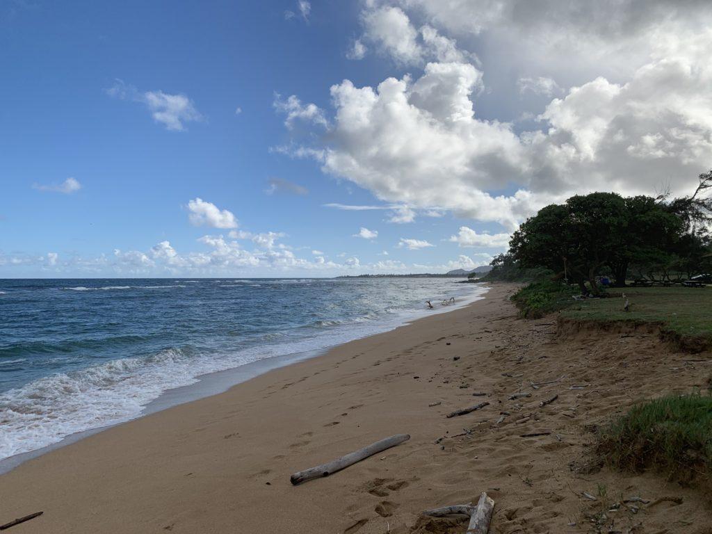Lydgate_Beach_Park_South_View