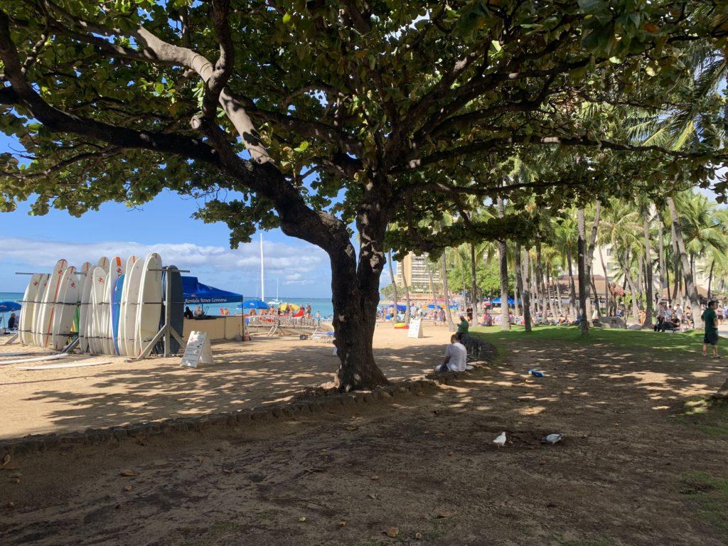 Waikiki_Beach_View